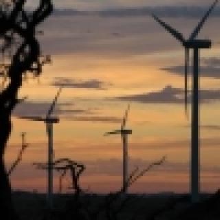 Droga energia z wiatraków
