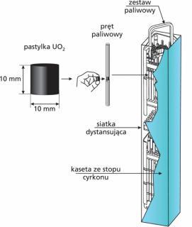Paliwo reaktora BWR - od pastylki UO2 do zestawu paliwowego